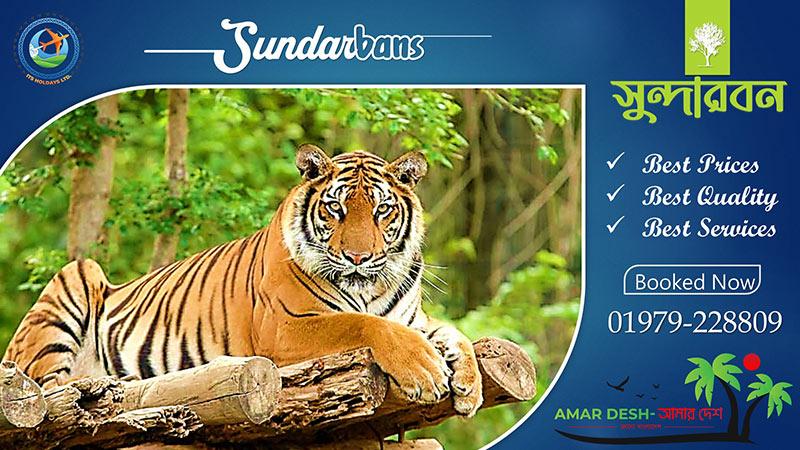 03 Days 04 Nights Sundarban Package Offer